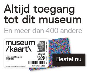 mk_banner_museum-site_zw_medium rectangle.png