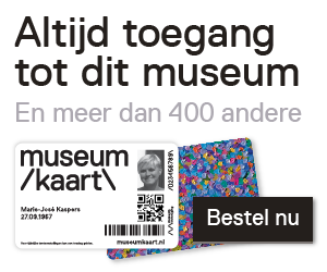 mk_banner_museum-site_zw_medium rectangle.png