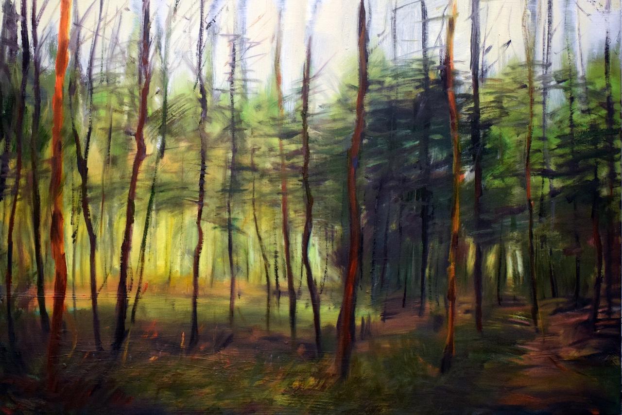 John Konijn A forest medium.jpg